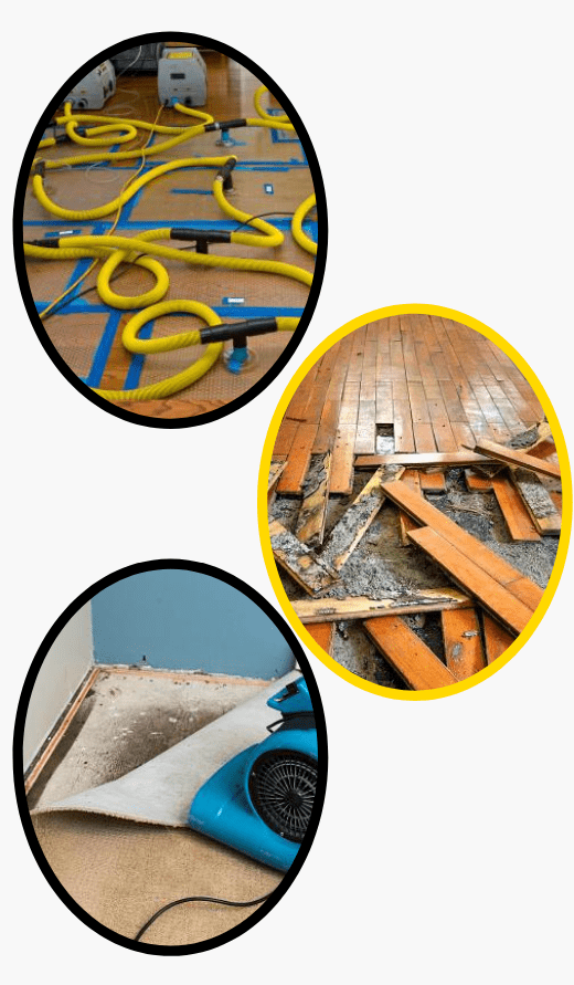 Flood Damage Restoration Mount Eliza