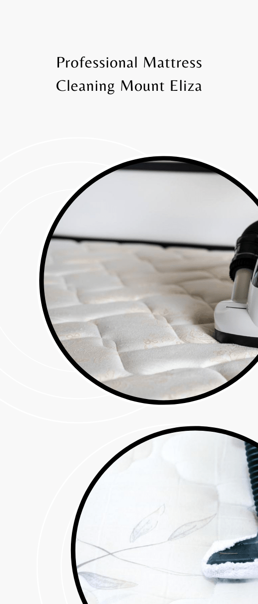 Professional Mattress Cleaning Mount Eliza